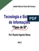 RAMOS, Ricardo Argenton - Tipos de SI