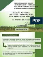 AVLUO DE FINCAS (El Informe de Avaluo)