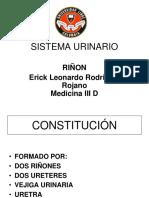 Histologia Sistemaurinario 110519142157 Phpapp02