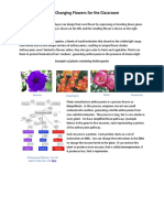Color-Changing-Flowers-for-the-Classroom.pdf