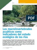 Dialnet-LosMacroinvertebradosAcuaticosComoIndicadoresDelEs-4015812.pdf