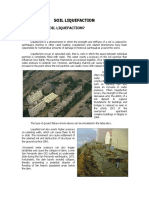 Summary of the Liquefaction Site 1998