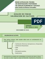 AVALUO DE FINCAS (Valoracion de Cultivos)AVALUO DE FINCAS
