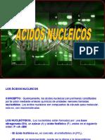 acidos_nucleicos 16