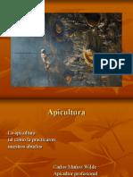 Apicultura Ecologica Munoz Completo