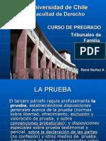 La Prueba y El Procedimiento Ordinario.ppt 0