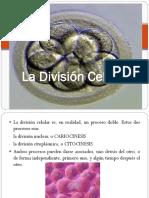 2 Biología 4 La División Celular