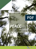 PEACC.pdf