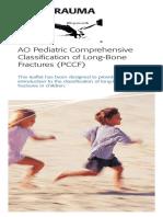 2008-09-PediatricClassificationBrochure