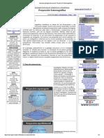 Apuntes Geología Estructural_ Proyección Estereográfica