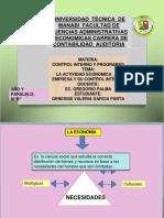 La Actividad Económica y La Empresa Control Interno DIAPOS CARRERA