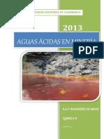 153217418 Informe Aguas Acidas en Mineria Original
