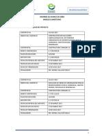 Informe de Avance de Obra e01