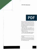 Feldman. Pensamientos verticales (selecci+¦n)