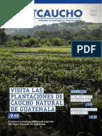 revista-sltcaucho-septiembre-2015.pdf