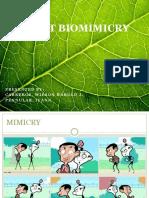 Plant Biomimicry (PENULLAR and CABREROS).pptx