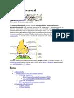 Plasticidad neuronal.docx
