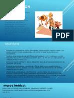 albañilería estructural introducción para ensayos