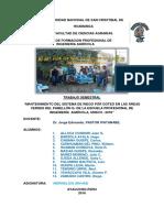 RIEGO POR GOTEO-- Areas Verdes de Pabellon G Final