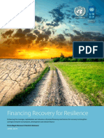 Financing Recovery for Resilience Report