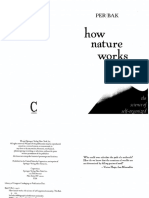 BakPer - 1996 How Nature works. The Science of self organized Criticality.pdf