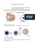 seminario nervios oculomotores
