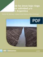 Inta h. Ascasubi Estimacion Areas Salinas Argentina 2016