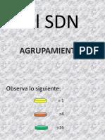 El SDN