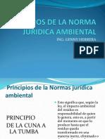 Clase 5. Principios de La Norma Juridica Ambiental