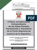 Pleno 2016.pdf