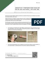 DIAGNOSTICO Y REPARACION DE FUGA DE GAS INE PUNTA ARENAS.pdf