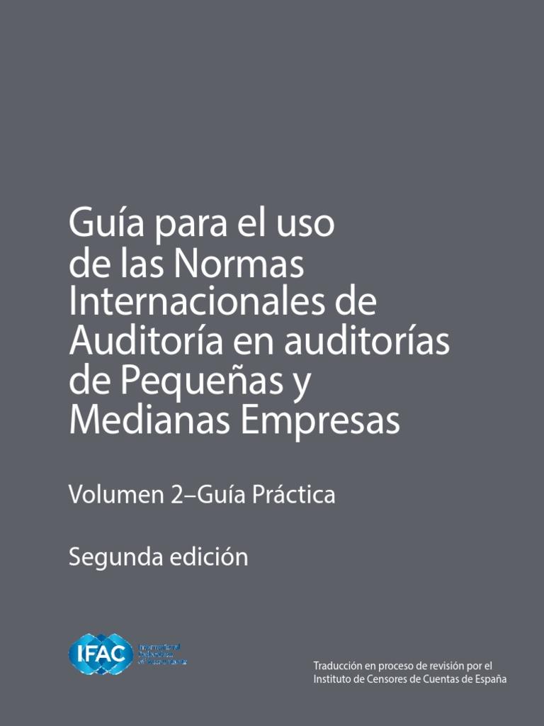 Guia para el uso de las NIAs en las pequeñas auditorias (Volumen 2 ...