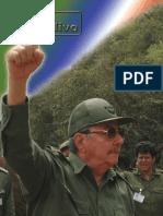 RVO2007-1.pdf