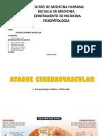 Compilado ACV PRACTICA.pptx