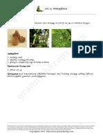 Patti-Vaithiyam-PDF.pdf