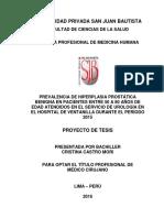Castro Mori, Cristina Proyecto de Tesis