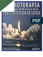 Eletroterapia.f íbio borges.pdf