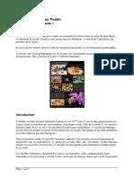 FPP Maya Abeille Butineuse v121116