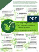 Grain 5720 20 Anos de Soja Transgenica en El Cono Sur de America Latina 20 Razones Para Su Prohibicion Definitiva