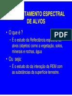 seminario 02 comportamento.pdf