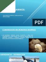 Micro Hongos Diversidad de Enzimas y Aplicaciones Biotecnologícas