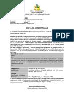 Medelo Carta de Arrematação Leilão Judicial