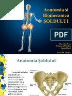 219596811 Anatomia Si Biomecanica SOLDULUI