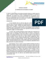 Informe de Comision (1)