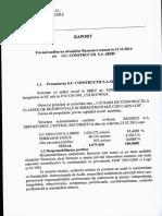 Raport auditare.pdf