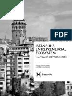 Istanbul's Entrepreneurial Ecosystem