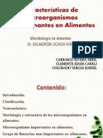 Microorganismos de Gran Importancia en Alimentos