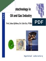 NANOTECNOLOGÍA EN INDUST GAS Y ACEITE.pdf