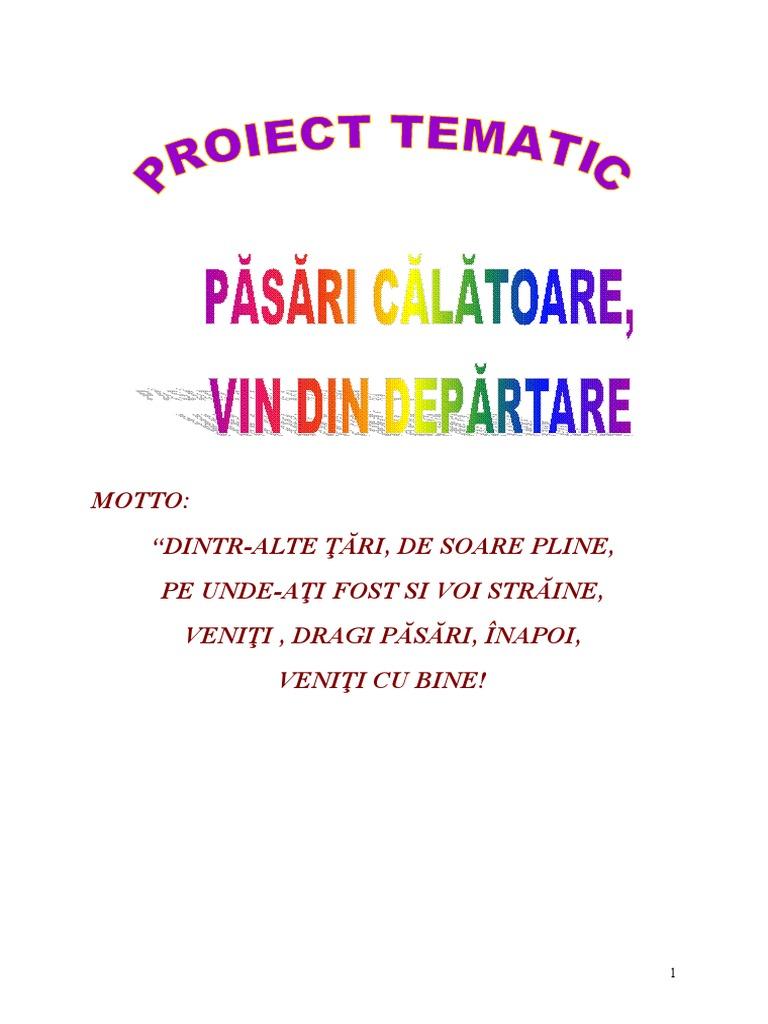 Proiect Pasari Calatoare