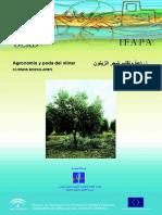 agronomia poda olivar